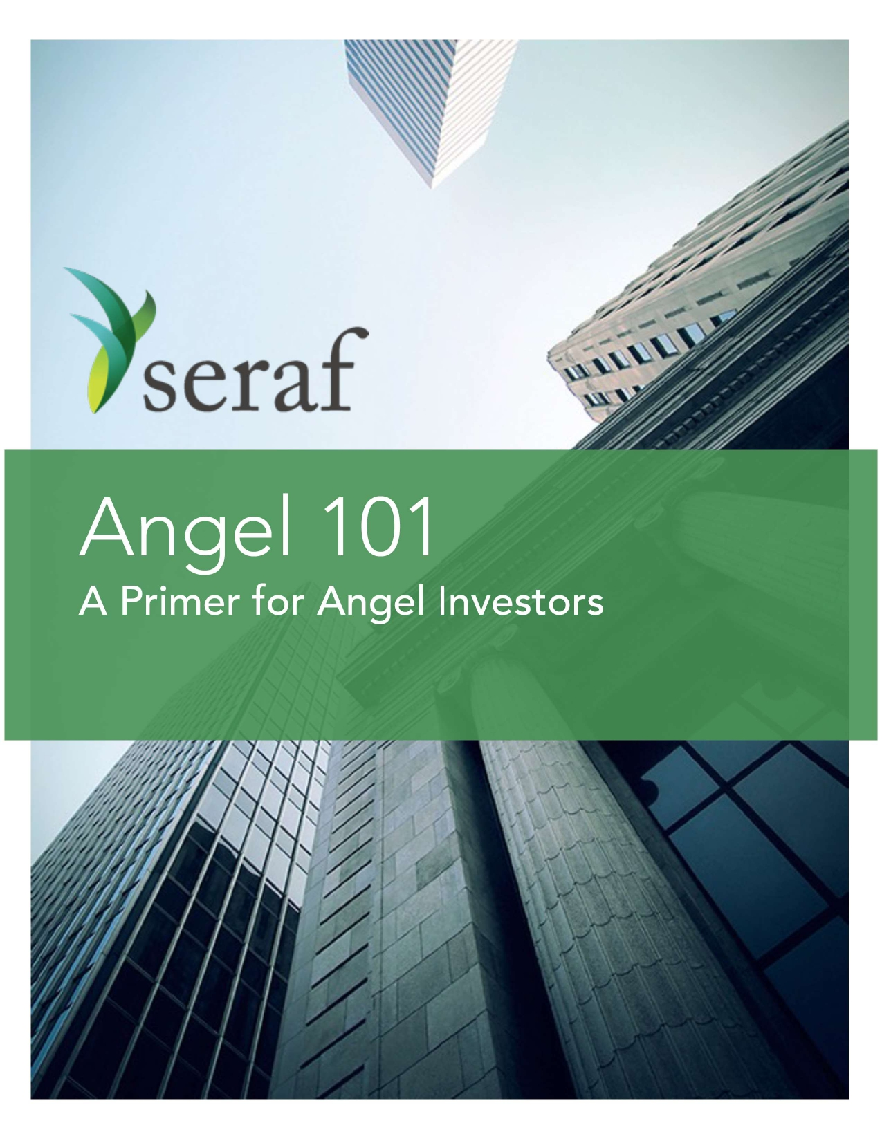 A primer for Angel Investors